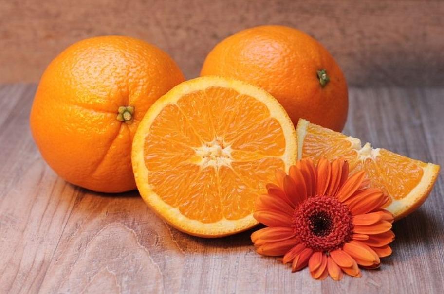 germinar naranjas